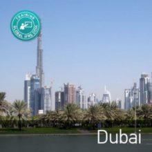 Dubai-300x300
